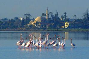 Chypre-Larnaca, Autotour Est Ouest