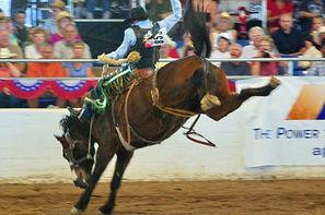 Etats-Unis-New Orleans, Autotour Cowboys et bayou 3*