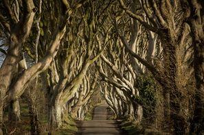 Irlande-Dublin, Autotour Winter is coming