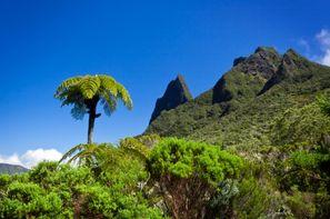 Autotour Découverte de la Réunion