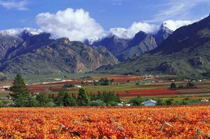 Circuit Paysages Sud Africains et Extension Safari