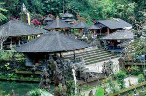 Indonesie-Yogyakarta, Circuit De Java à Bali