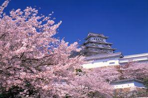 Japon-Tokyo, Circuit Japon Passé & Présent