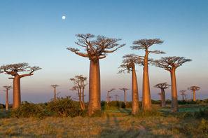Madagascar-Antananarivo, Circuit Par la mythique route du sud + Extension balnéaire à Majunga