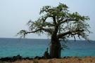 Sao Tome - Sao Tome, SAVEURS ET COULEURS DE SAO TOME