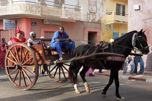 Senegal-Dakar, Circuit Les Chefferies du Sénégal