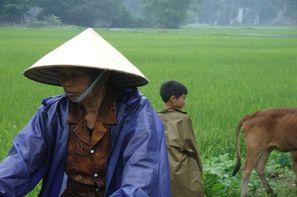 Vietnam - Hanoi, Circuit Du Vietnam au Cambodge