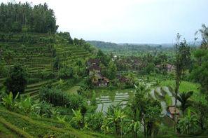 Bali-Denpasar, Combiné circuit et hôtel Circuit 3* Charme et séjour au Sanur Paradise 4*