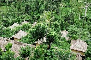 Bali-Denpasar, Combiné hôtels Balnéaire au Sri Phala 3* sup à Sanur + The Lokha Ubud 4*