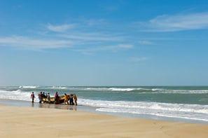 Senegal - Dakar, Combiné circuit et hôtel Plages, Culture & Traditions avec extension au Keparanga