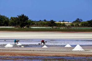 Combiné circuit et hôtel Plages, Culture & Traditions avec extension à l'Africa Queen   - Combiner la découverte des plus grands sites à une extension balnéaire : c'est la formule idéale pour profiter pleinement du Sénégal !