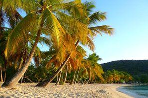 Marie-Galante-Pointe-à-Pître, Croisière Douceur des Petites Antilles - Costa Magica 5*