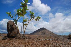 Cap Vert-Ile de Sal, Circuit En Etoile : Trésors Cachés de Sal 5*