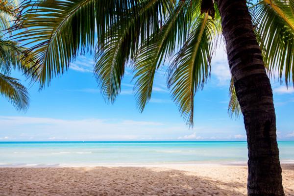 Plage - Memories Caribe Beach Hôtel Memories Caribe Beach4* Cayo Coco Cuba