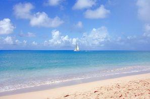 Guadeloupe-Pointe A Pitre, Combiné hôtels Combiné 3* Charme : Guadeloupe au Caraib'Bay & Martinique à la Villa Melissa + Location de voiture
