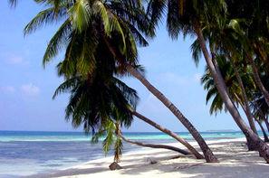 Guadeloupe-Pointe A Pitre, Combiné hôtels Combiné Guadeloupe : Basse-Terre au Caraib'Bay 3* & Marie-Galante au Village de Ménard + location de voiture cat A 3*