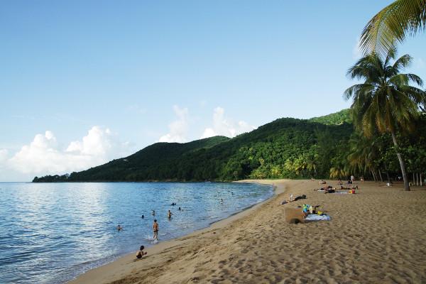 Plage - Habitation Grande Anse Hôtel Habitation Grande Anse3* Pointe A Pitre Guadeloupe