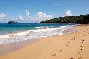 Guadeloupe-Pointe A Pitre, Hôtel Le Rayon Vert 3* + Location de voiture