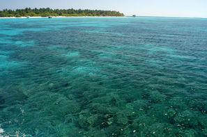 Maldives-Male, Hôtel Palm Beach Resort & Spa Maldives 4*