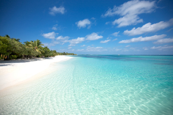 Plage - LUX* South Ari Atoll Hôtel LUX* South Ari Atoll5* Male Maldives