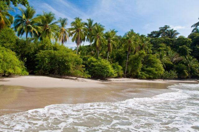 Costa Rica : Autotour Costa Rica Pura Vida & plage