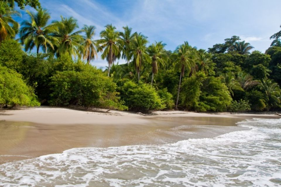 Autotour Costa Rica Pura Vida & plage San jose Costa Rica