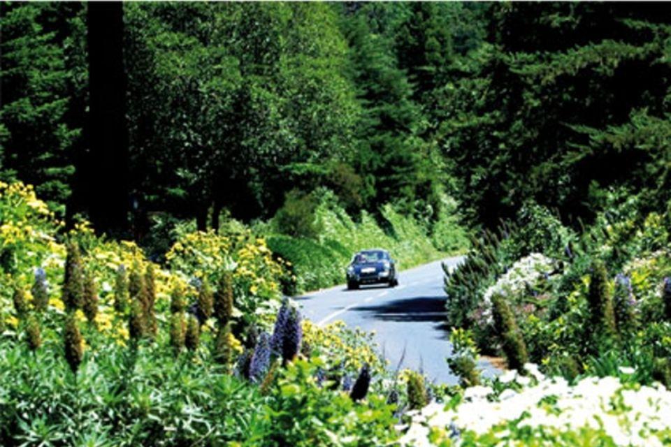 Autotour Sous le Charme de Madère Funchal Madere