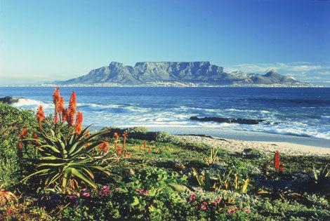 Circuit Afrique Du Sud Premieres Afrique Du Sud Promovacances