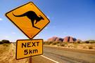 Au Royaume des Kangourous