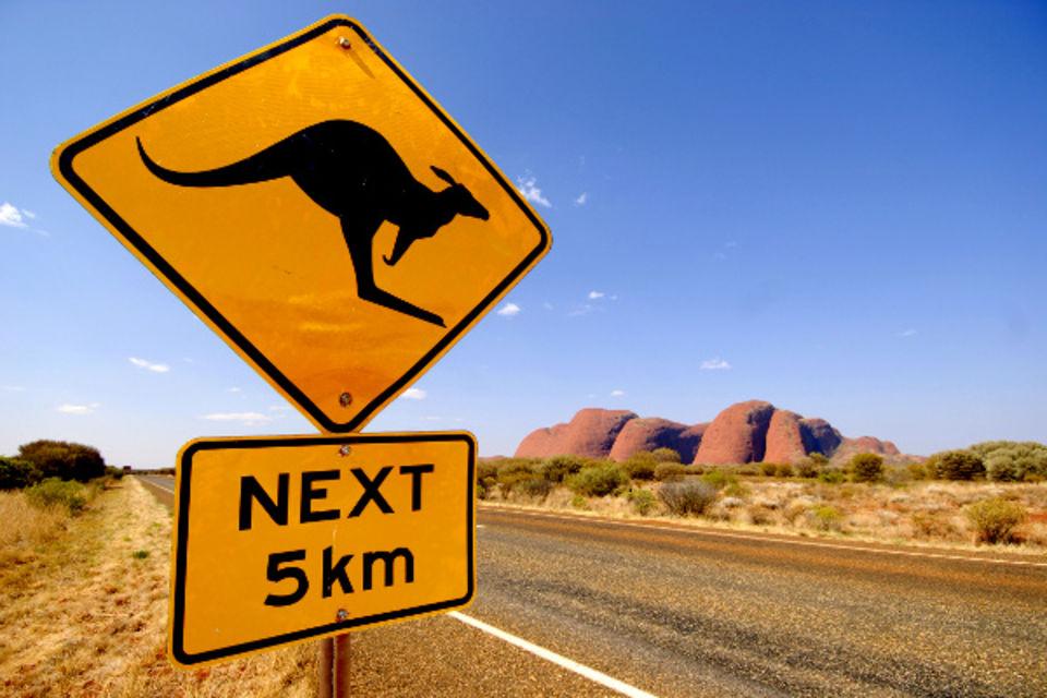 Circuit Au Royaume des Kangourous Sydney Australie