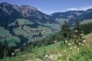 Decouverte du Tyrol