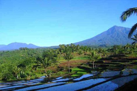 Bali-Denpasar, Circuit Indispensable Bali