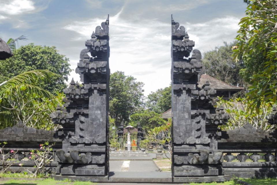 Circuit Lotus de Bali en mini groupe Denpasar Bali