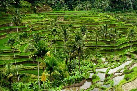 Bali-Denpasar, Circuit Soleil de Bali et ses plages 5*