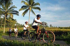 Combiné circuit et hôtel Bali zen et aventure