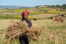 Splendeurs du Myanmar