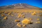 Le rêve bolivien