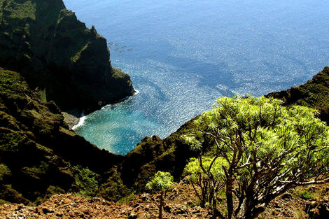 Canaries-Tenerife, Circuit Ténérife Saveur Nature 4*