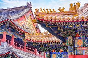 Circuit Premier Regard Chine