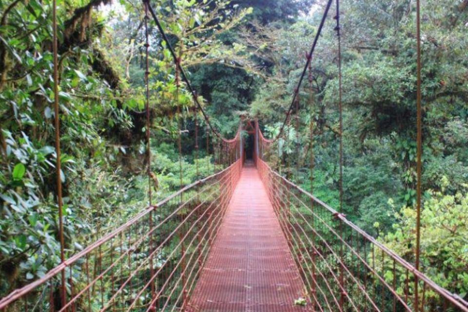Circuit Costa Rica, où la nature prend vie San jose Costa Rica