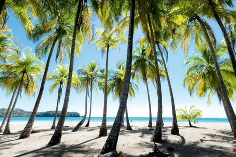 Costa Rica-San jose, Circuit Indispensable Costa Rica + extension plage