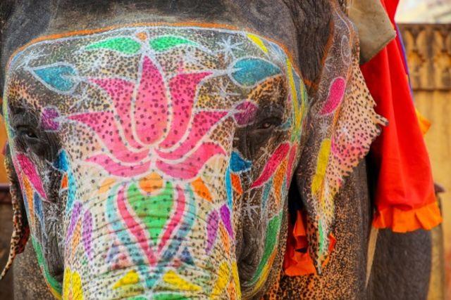 Inde : Circuit Splendeurs de l'Inde du Nord