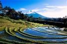 Lumieres de Bali