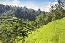 Indonésie Java, Bali & Célèbes