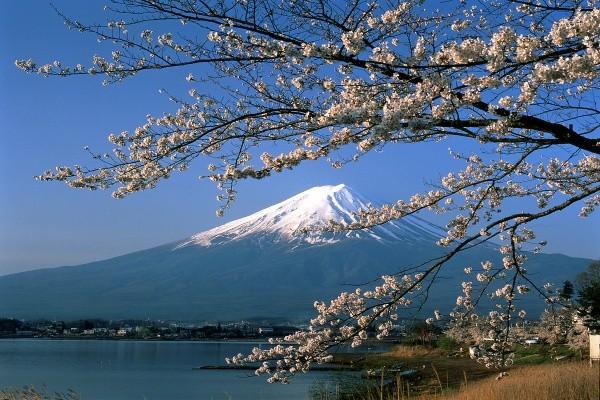 Splendeurs du Japon Circuit Splendeurs du Japon Osaka Japon