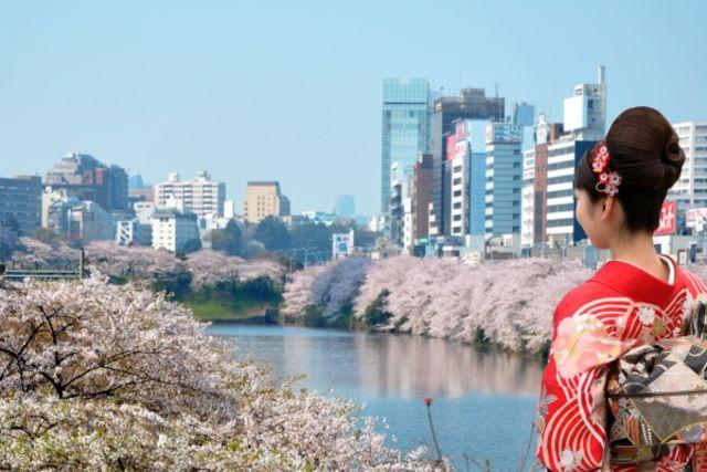 Japon : Circuit Premier Regard Japon