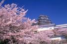 Japon Passé & Présent