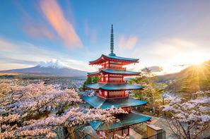 Circuit Samouraïs et Kimonos