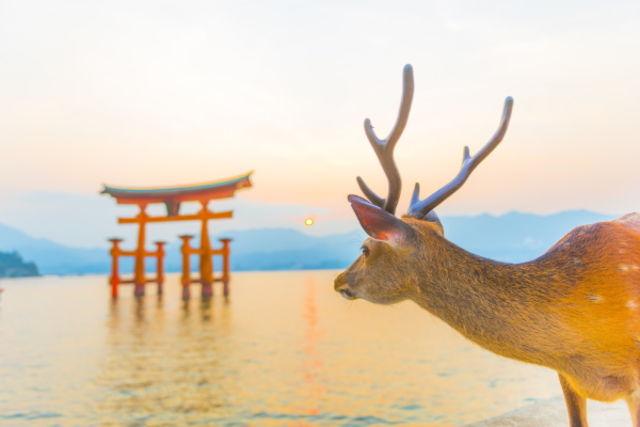 Japon : Circuit FRAM Les Essentiels du Japon & extension Hiroshima