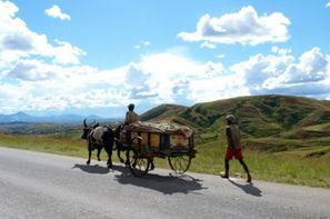 Madagascar-Antananarivo, Circuit Madagascar Solidaire en Terre Malgache